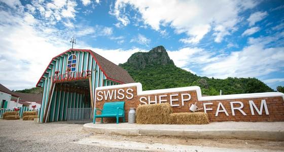 SwissSheepFarm